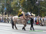 Trachtenumzuge_beim_Oktoberfest.jpg